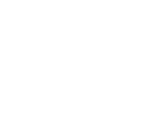 Onlineshop Systeme